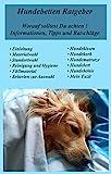 Hundebetten Ratgeber, worauf solltest Du achten! Informationen, Tipps und Ratschläge